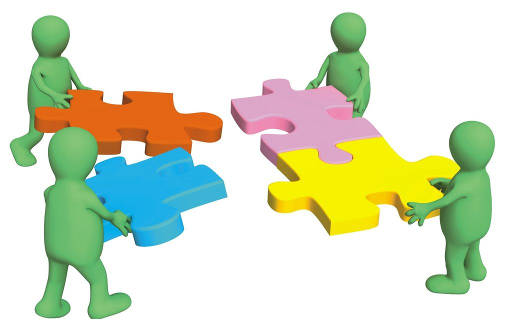 Working within a Multidisciplinary Team